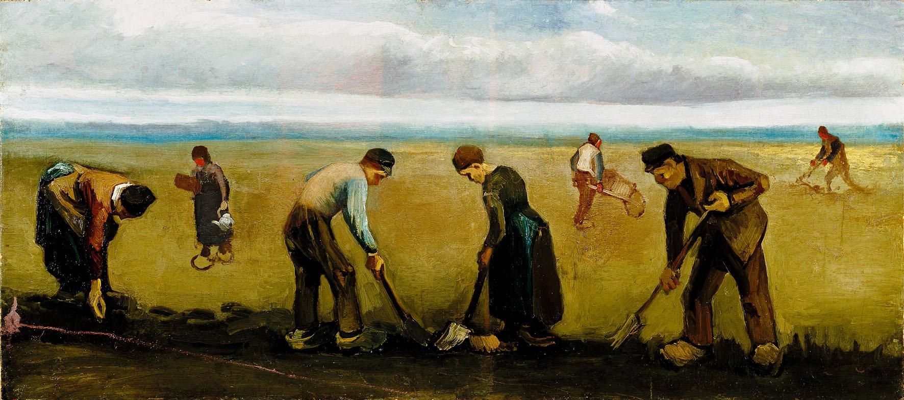 Coltivatori diretti, coloni, mezzadri e imprenditori agricoli professionali: contributi obbligatori dovuti per l'anno 2012.
